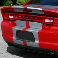 Charger Carbon Fiber License Plate Insert -2011+