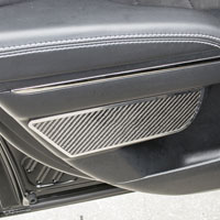 Charger 2Pc Carbon Fiber Rear Door Badges - 11-15