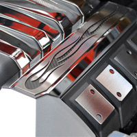 "2010+ Stainless Carbon Fiber ""True Flame"" Fuel Rail Covers"