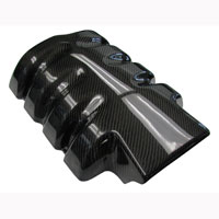 Mustang GT Fiberglass or Carbon Fiber Plenum Cover - 05-09