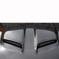 7173 Mustang Nasa Hood Scoop Grille Inserts Pair P 867 besides Doch05060708 besides Doch05060708 further actionautoaccessories in addition Nov 06. on 06 gto ram air hood piece