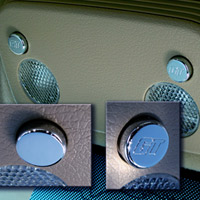 Map Light Button Covers (pair) - GT or Smooth - Mustang 05-13