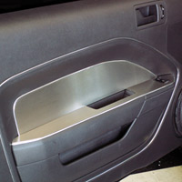 Mustang 2pc Brushed Stainless Door Panel Inserts - 05-09
