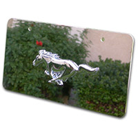 Chrome Pony Stainless Steel Front License Plate