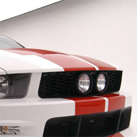 3dCarbon Eleanor Grille - 05-09 Mustang GT