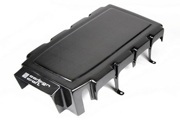 Carbon Fiber Engine Plenum Cover - Mustang 2005 - 2010